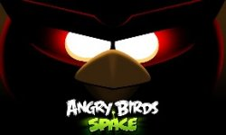 Angry brids space  vignette