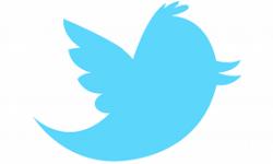 mise a jour twitter prochainement bug ios 6 vignette