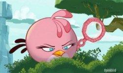 rovio Pinkbird vignette