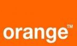 vignette logo orange