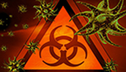 virus vignette head